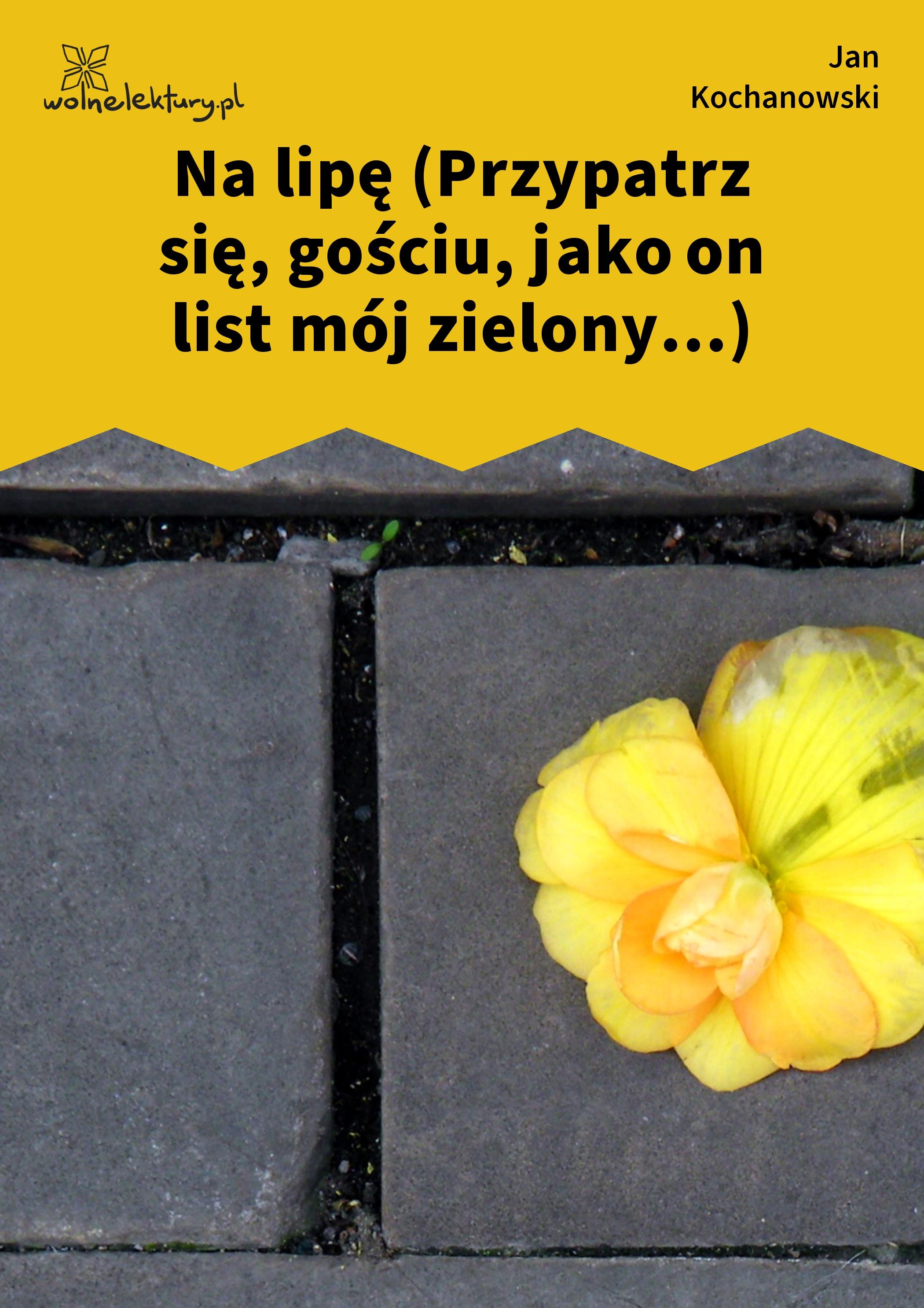 Jan Kochanowski Fraszki Księgi Trzecie Na Zdrowie