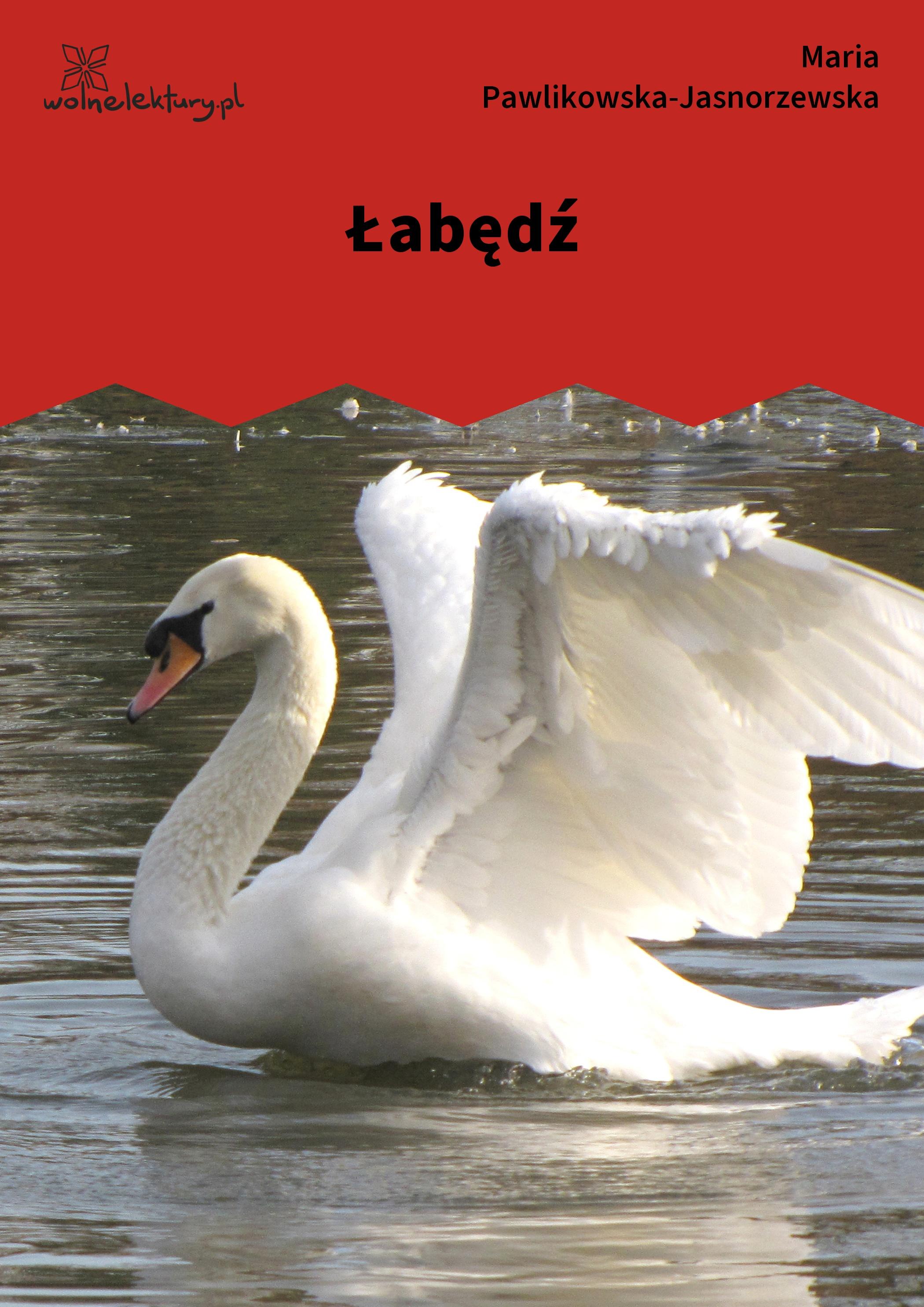 Maria Pawlikowska Jasnorzewska łabędź Wolne Lektury