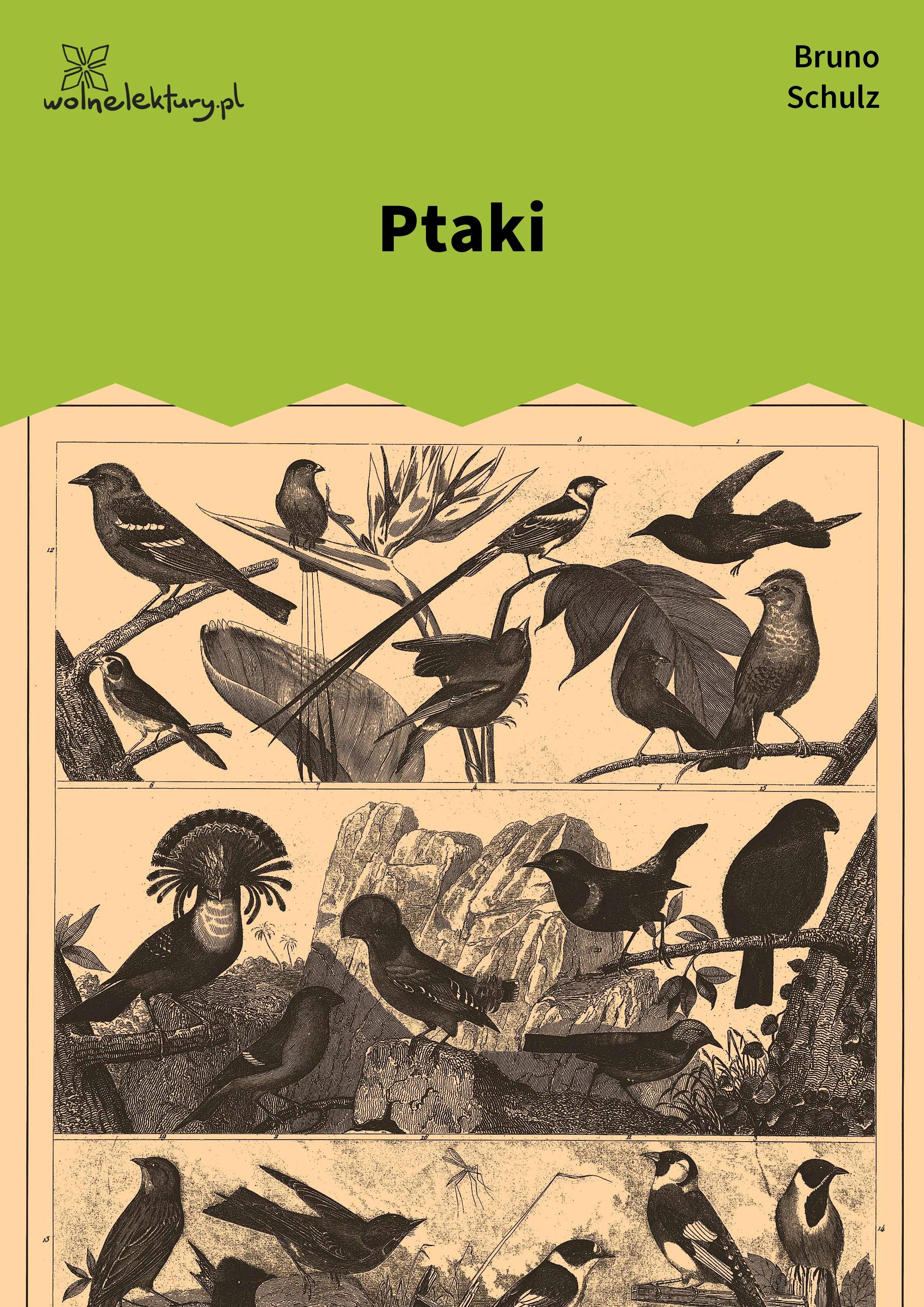 tadeusz borowski opowiadania pdf free