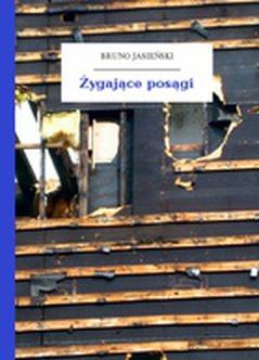 Bruno Jasieński But W Butonierce Tomik żygające Posągi